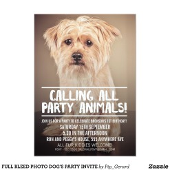 full_bleed_photo_dogs_party_invite-rebfa098b031140dbb4bd9eb1bbeeb7a2_zkrqs_512(1)